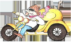 Logo Trike Vermietung Dewor 300